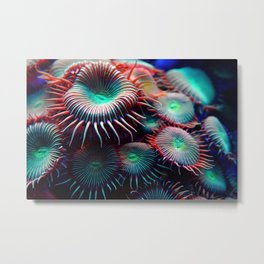 Anemonsters Metal Print