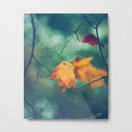 Autumn and Evergreen Metal Print