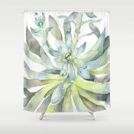 Echeveria Succulent Watercolor Cactus Nature Shower Curtain