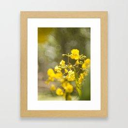 Popcorn Flower Bokeh Delight Framed Art Print