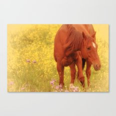 Wild as the Flowers Canvas Print