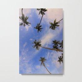 Palm Trees Metal Print