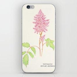 Botanical Sketches 4: False Spirea iPhone Skin