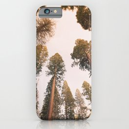 Sequoia Sunset iPhone Case