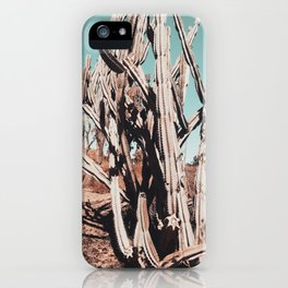 Desert Cactus Photography | Cacti Nature iPhone Case