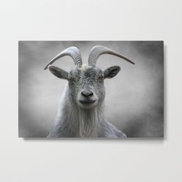 The Old Goat Metal Print