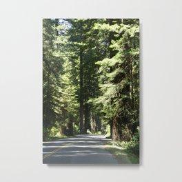 Humboldt Redwoods State Park Road Metal Print
