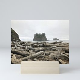 Pacific North West Shores - Olympic National Park Mini Art Print