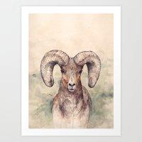 ram Art Prints featuring Ram by Joy Paton