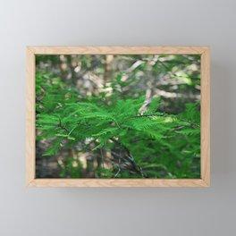 Shadowed Stories Framed Mini Art Print