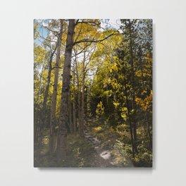 Colorado Fall Metal Print