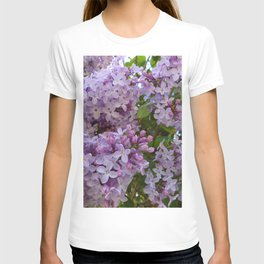 Lilac ~ Periwinkle T-shirt