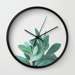 Crassula Wall Clock
