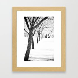 Row of Trees in the Snow Framed Art Print