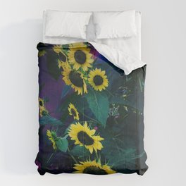 43 Degree Thursdays Comforters