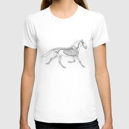 Horse Anatomy T-shirt
