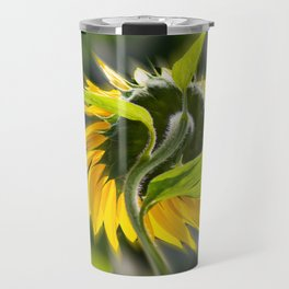The sunflower from behind Travel Mug