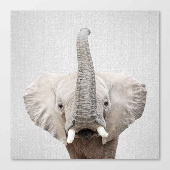 Elephant 2 - Colorful Canvas Print