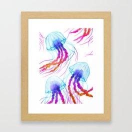 Jellyfish Daydreams Framed Art Print