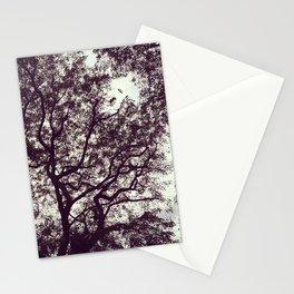 stiffs Stationery Cards