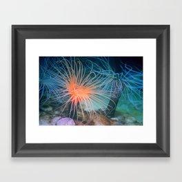 Fronds Framed Art Print
