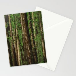 Sitting in the Forest Stationery Cards