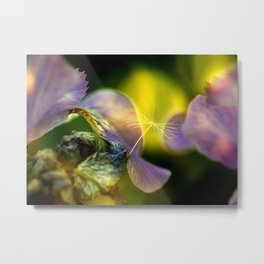 relaxed Seed Metal Print