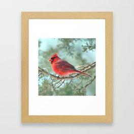 Dreamy Morning (Northern Cardinal) Framed Art Print