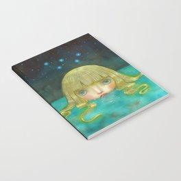 Cassiopeia Notebook