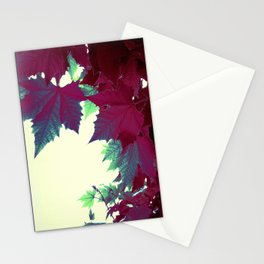 Under the burgundy Maple Tree Stationery Cards