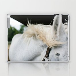 Windblown Horse's Mane Laptop & iPad Skin