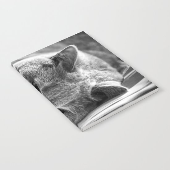 Cat Black white 3 Notebook