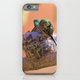 Hummingbird Baby in the Nest by Reay of Light iPhone Case