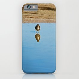 Reflections on Ding II iPhone Case