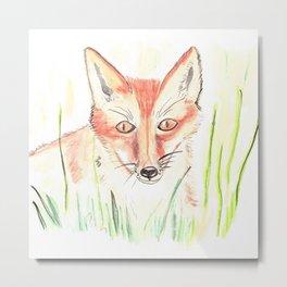Fox Watching Metal Print