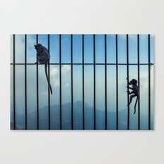 India - Monkey bars Canvas Print