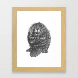 Beaver Framed Art Print