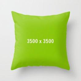 3000x2400 Placeholder Image Artwork (Ebay Green) Throw Pillow