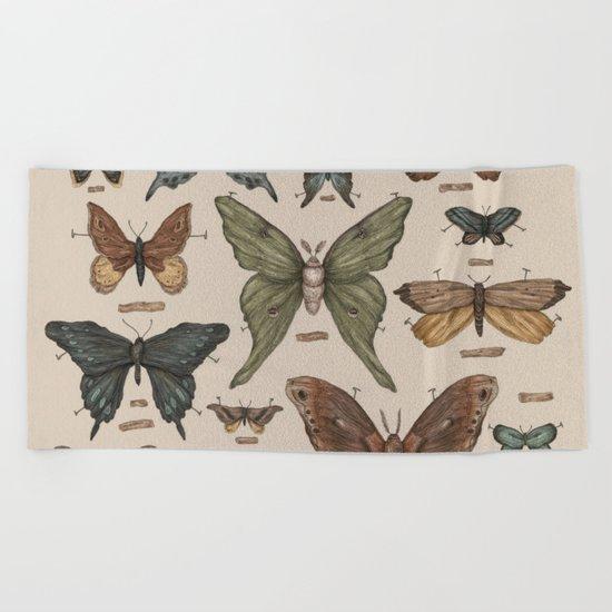 Butterflies and Moth Specimens Beach Towel