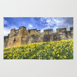 York City Walls Rug