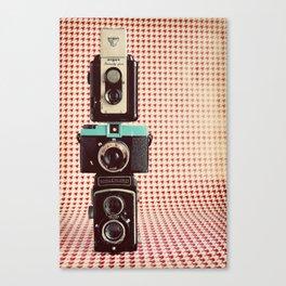 Dapper in Technicolor Canvas Print