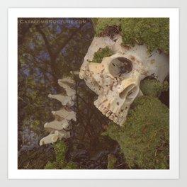 Catacomb Culture - Human Skull in Creek Art Print