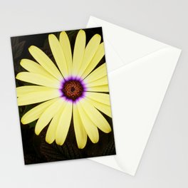 Yellow African Daisy Stationery Cards