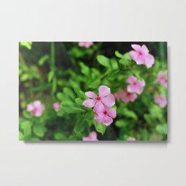 (piink)x(flowers) Metal Print