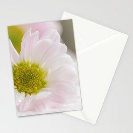 One Chrysanthemum flower Stationery Cards