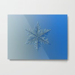Real snowflake macro photo: Winter1 Metal Print
