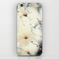Flower 2 iPhone & iPod Skin