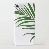 fern iPhone & iPod Cases featuring Fern by Tamsin Lucie