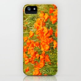Golden Poppies 2017 iPhone Case