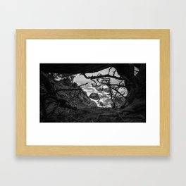 Looking Through the Trees Framed Art Print
